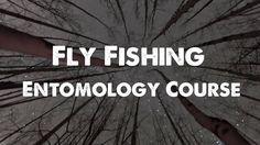 Fly Fishing Entomology Course on Vimeo