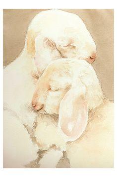 Watercolor by Simona Cordero #art #watercolor #sheep