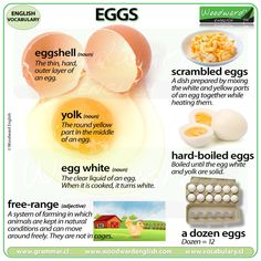 EGG Vocabulary - 7 Words associated with Eggs More details, including examples sentences, on our website. Slang English, English Exam, English Idioms, English Study, English Words, English Vocabulary, English Grammar, English Class, English Language
