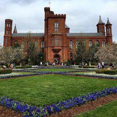 Castelo do Instituto Smithsonian maior centro museológico e de pesquisa do mundo...