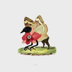 Flora/Fauna#2 by Resatio, fine art print from artist's collage #resatioadiputra #resatio #lumarte #lumarteartonline #fineart #art #illustration #drawing #artyourwall