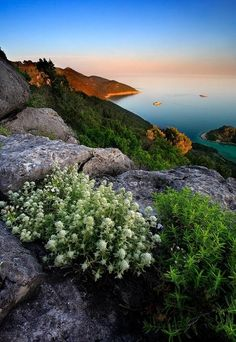 bluepueblo: Sunset, Mljet Island, Croatia; photo via manuel