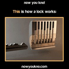 How a lock works - I refuse to confess to the amount of time I've spent just watching this gif.