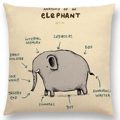 Anatomy of a Funny Elephant Animal Flamingo Fox Dachshund Giraffe Hedgehog Lion Pug Squirrel Humor Cushion Cover Sofa Throw Pillow Case Funny Animal Pictures, Funny Animals, Cute Animals, Online Pet Supplies, Dog Supplies, Funny Elephant, Animal Cushions, Funny Pillows, Raining Cats And Dogs
