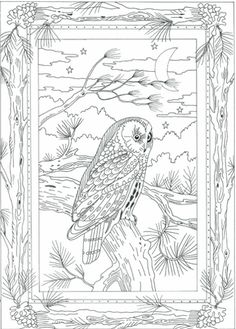 Night Owl Embroidery Pattern | Flickr - Photo Sharing!
