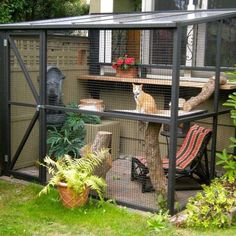 Apparently, Catios Are a Thing Now - Courtesy of Catio Spaces