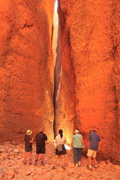Bungle Bugles in the Purnululu National Park - Western Australia