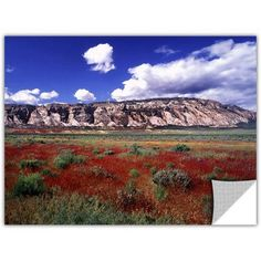 Dean Uhlinger Dinosaur Colorado Removable Wall Art, Size: 24 x 36, Red