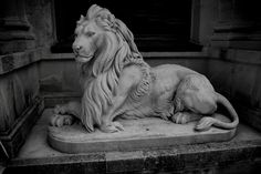 lion statue face - Google Search
