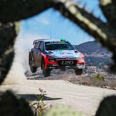 매 #경기 에 #최선 을 다해 달리는 #현대월드랠리 팀입니다!  #Hyundai_World_Rally #team tries the #best #drive every single #race !  #ThierryNeuville #DaniSordo #HaydenPaddon #i20 #world #motor #sport #Guanajuato #daily #티에리누빌 #다니소르도 #헤이든패든 #과나후아토 #점프 #선인장 #모터스포츠 #현대자동차 #자동차 #자동차그램