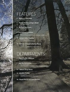 https://flic.kr/p/4YhmM1   Tear Sheet:  Table of Contents   Leaf and Owl table of contents page.  A clean way of presentation