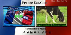 Sustainability, Sustainable Development
