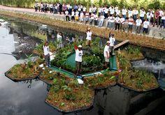 Sistema de tratamento ecológico recupera rios poluídos e cria jardins flutuantes