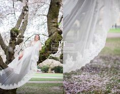Lace Wedding Veil Cathedral Lace Veil  One by PTBridalHandMade