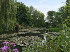 Monet's Water Lilly's. What a dream #nature #travel #inspiration #giverny #fashiondesign #designinspiration