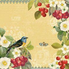 Terri Conrad #birds