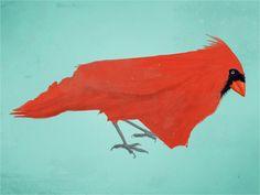 cardinal / north carolina