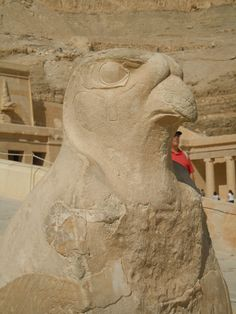 Falcon God Horus at the Mortuary Temple of Queen Hatshepsut