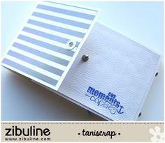 Mini album – Moments capturés – Taniscrap – L'univers de Zibuline