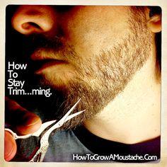 Ok, So your stache is waxed and looking ace, or your beard is a perfect point. You're looking sharp, but how to maintain such panache day after day? Trimming is how. Yes, this is an article about the art of facial fur trimming. A topic often overlooked Mustache Grooming, Beard Grooming, Beard No Mustache, Great Beards, Awesome Beards, Beard Styles For Men, Hair And Beard Styles, Trimming Your Beard, Mens Facial