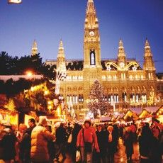 Christmas Markets in Vienna exude a fantastic atmosphere. A Vienna Christmas Market is an unforgettable experience. The largest Xmas Market in Vienna is the Magic of Advent which takes place in front of the City Hall. Vienna Christmas, Best Christmas Markets, Christmas Markets Europe, Magical Christmas, Christmas Travel, Christmas Holiday, Bratislava, Vienna Hotel, Online Travel