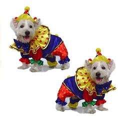 Dog Costume Shiny Clown Costumes Dogs As Colorful Circus Clowns * Click image to review more details. (This is an affiliate link) #DogApparelAccessories