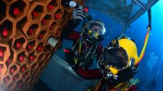 Aging Wine on the Bottom of the Sea Could Become a Thing in France - http://www.odditycentral.com/news/aging-wine-on-the-bottom-of-the-sea-could-become-a-thing-in-france.html