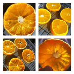 How to dry citrus slices, really simple and would be great for Christmas decorations and wreaths
