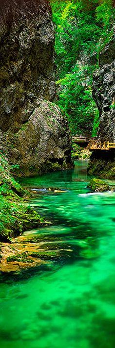 Slovenia.  Photo of Vintgar gorge by Chris Morrison