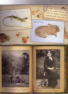 When I was a small girl, I used to love having  my Parents read the Tales of Peter Rabbit books  to me and then when I was old enough, readi...