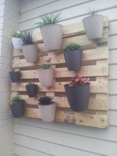 My+first+(but+not+last)+pallet+project:+A+vertical+garden
