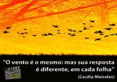 www.diariodasgemeasparaenses.blogspot.com.br