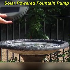 Solar Powered Fountain Pump This fountain kit makes an affordable and efficient pump that requires no electricity or batteries, as it runs on solar power alone! The solar-powered water fountain comes with a few. Garden Yard Ideas, Garden Projects, Sun Garden, Patio Ideas, Bird Bath Garden, Shade Garden, Simple Backyard Ideas, Diy Garden Ideas On A Budget, Creative Garden Ideas