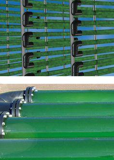 Algler biyoyakıt UV dirençli boru
