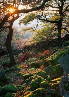 Gardom's Edge, Peak District National Park near Derbyshire, England, UK