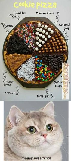 Cat Memes  Cookie Pizza *Me too!!...heavy breathing. Lol K*