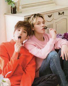 Hansol e Wonwoo numa foto SÓ com Pirulito, já é covardia com meu coração  ~ABCherry