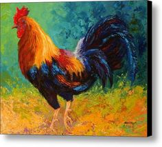 Rooster Canvas Prints and Rooster Canvas Art for Sale