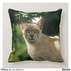 Throw Pillow created by Jon_Delorme. Cat Gifts, Cat Lover Gifts, Cat Lovers, Cat Pillow, Pet Photographer, Custom Pillows, Homemaking, My Best Friend, Cute Cats