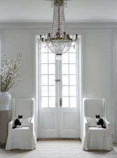 Perfect staging right down to the kitties!