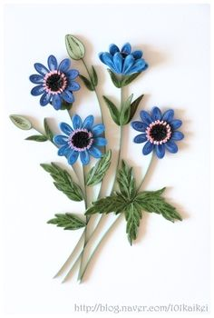 아네모네 꽃