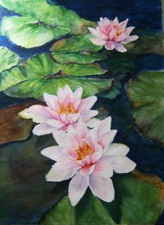 Water Lilies by Karen Povey