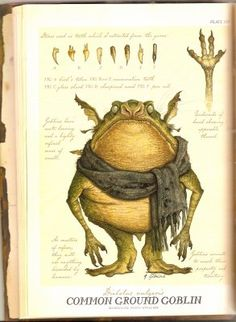 Common Ground Goblin by Tony Terlizzi from Arthur Spiderwick's Field Guide to the Fantastical World Around You