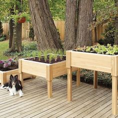 Create your very own container garden with our Elevated Cedar Garden Planter with Shelf. Elevated garden planters are ideal for herb Building A Raised Garden, Raised Garden Beds, Raised Beds, Raised Gardens, Garden Table, Garden Planters, Porch Garden, Landscaping Tips, Garden Landscaping