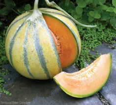 With these small varieties, you can grow deliciously sweet summer melons without fearing they'll take over your backyard.