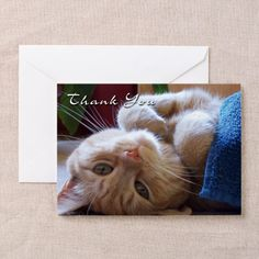 This cat is saying thank you! - Gift Ideas For Cat Lovers (CafePress.com)