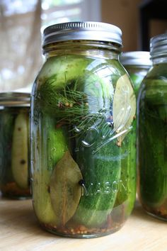 A Simple Recipe for Homemade Natural Fermented Pickles | My Humble Kitchen
