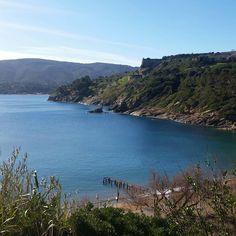 Stamani il sole splende sulla spiaggia di #barbarossa a #portoazzurro. Continuate a taggare le vostre foto con #isoladelbaapp il tag delle vostre vacanze all'#isoladelba. Visita il sito http://ift.tt/1NHxzN3