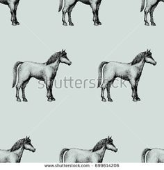 Horse, vintage vector seamless pattern. Can be use for shops and markets of organic food. Retro illustration.