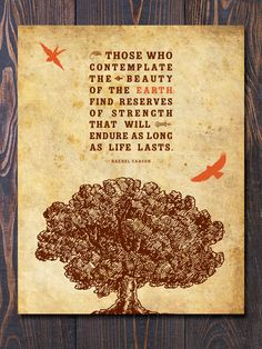 Those who contemplate the beauty of the earth find reserves of strength that will endure as long as life lasts. - R. Carson /  Love this quote, makes for a great print!
